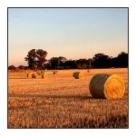 hay-bale-sunset